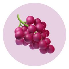 Fruit Raisin